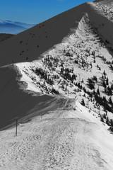 Winter Ladscape