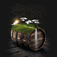 Sunny vineyard on the wine barrel in dark cellar