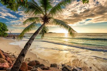 Fototapete - Beautiful Sunset at tropical beach.