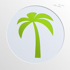 Paper Palm