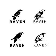 raven set logo with some beautiful art
