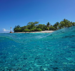 Over and under sea surface, tropical island shore with a school of fish (plain flagtail) underwater, Tiputa pass of Rangiroa atoll, Tuamotu, French Polynesia, Pacific ocean