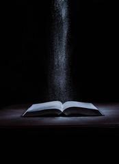 School books on desk, education concept, educate, technology, cat, splash