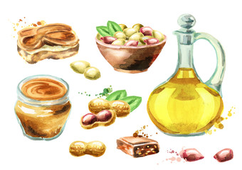 Peanut products set. Watercolor hand drawn