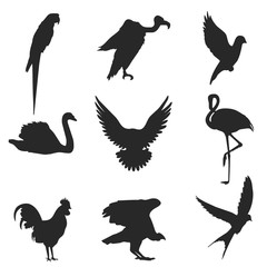 Birds. Set of vector silhouettes isolated on white background.