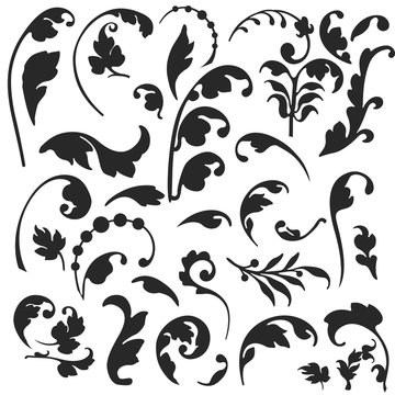 Vector floral. Set of vector silhouettes isolated on white background.