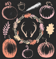 Autumn and Thanksgiving Chalk Drawing Design Elements Vector Set