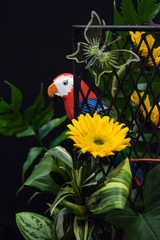 yellow flower with parrot bird