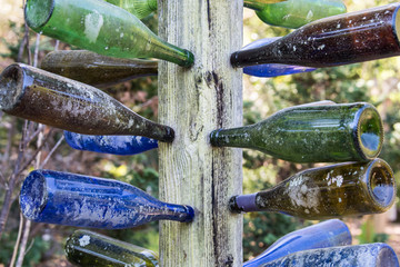 glass bottles mounted on tree or post