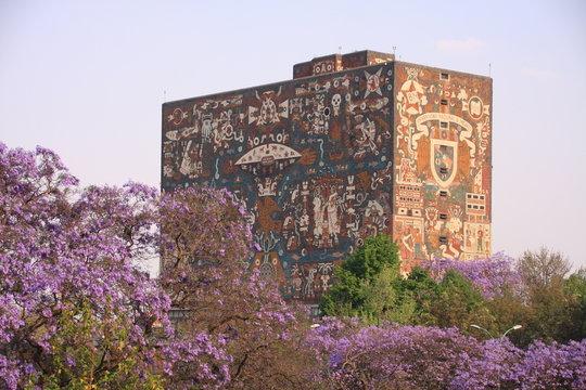 la bibliothèque centrale de Mexico