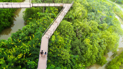 people of man and girl in top view walk at wooden sky walkway in forest with trees and river at the morning sunrise.(aerial forest view)