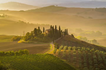 Papiers peints Toscane Fairytale, misty morning in the most picturesque part of Tuscany, val de orcia valleys
