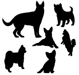 Illustration, vector, silhouette dog set