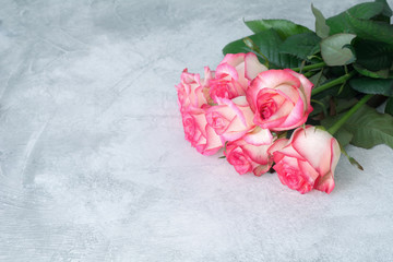 Bouquet of pink roses on concrete background with copy space