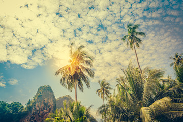 Coconut palm trees and limestone rocks at sunny day at blue sky with clouds. Beautifull sea sunset nature background. Travel concept. Photo from Railay Beach, Krabi, Thailand. Vintage filter.