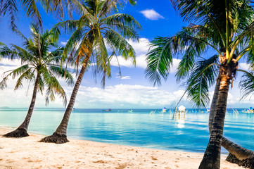 View on turquoise palm beach by Phu quoc island in Vietnam