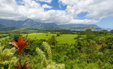 Beautiful view point near Hanalei on Kauai, Hawaii.