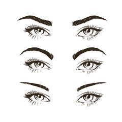 3 basic eyebrow shape types vector illustration. Fashion female brow