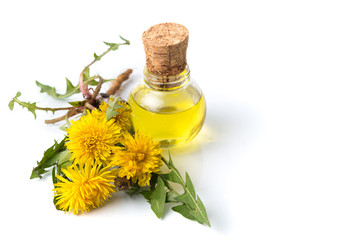 Dandelion flowers and tincture isolated