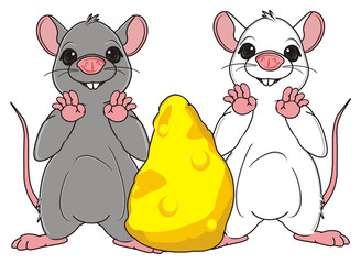 Animal, rodent, rat, mouse, cartoon, gray, teeth, tail, stand, two, couple, white, cheese, large