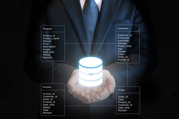 Professional businessman connecting network and database on hands in technology and business concept Wall mural