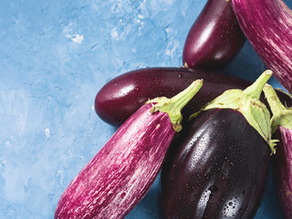 Purple eggplants on blue textured background. Healthy organice produce