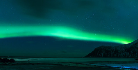 Aurora Borealis Known as Norther Lights Playing with Vivid Colors Over Lofoten Islands in Norway.