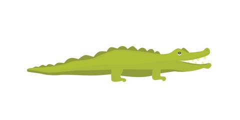 Cute Crocodile. Aligator vector cartoon illustration