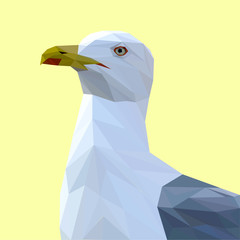 Seagull bird low poly design. Triangle vector illustration.