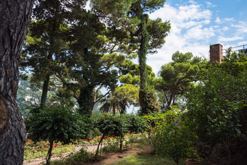The Gardens of Augustus on Capri Island