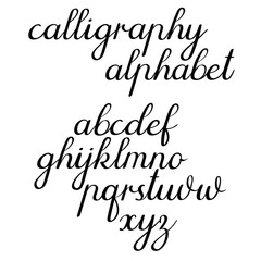 Calligraphic vector alphabet. Hand lettering font, handwritten letters. Vector illustration. Isolated on white background.