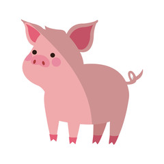 cute pig animal, cartoon icon over white background. colorful design. vector illustration
