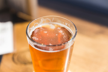Fresh Pint of Beer in Sunlight