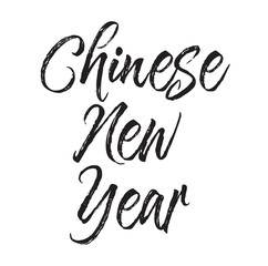 chinese new year, text design. Vector calligraphy. Typography poster.