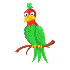 Colorful parrot sitting on branch isolated on white