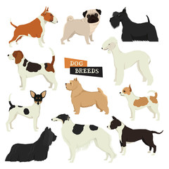 Dog collection Geometric style Vector set of different dog breeds Isolated objects Part three