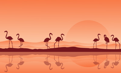 Silhouette of flamingo with reflection on the lake