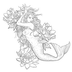 Sketch of a beautiful mermaid on a white background.