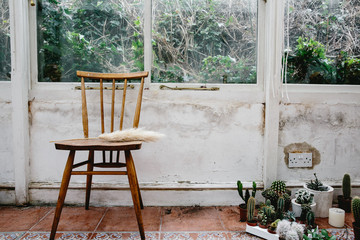 Chair in conservatory with cacti and other plants