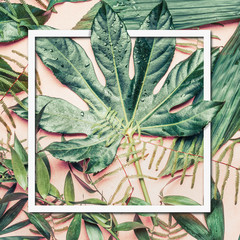 Wall Mural - Green leaves of  tropical nature , top view, frame.