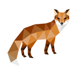 head of fox
