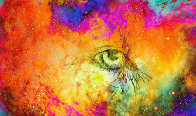 lion eye. animal drawing. Color cosmic space.