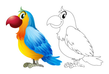 Doodle animal for parrot macaw