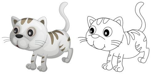 Spoed Foto op Canvas Babykamer Animal outline for cute cat