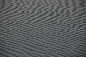 風紋の砂浜