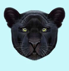 Illustrated portrait of Black panther