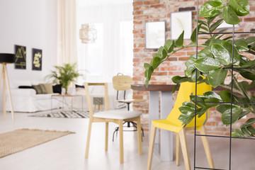 Plant in loft