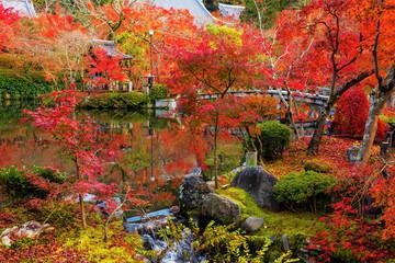 Eikando garden in autumn, Kyoto