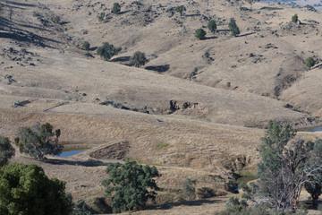 A dry Australian Farm
