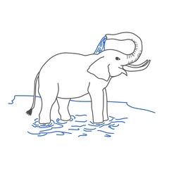 Elephant pouring itself with water